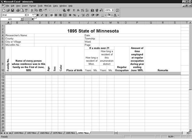 CensusTools 1895 Minnesota Census Template