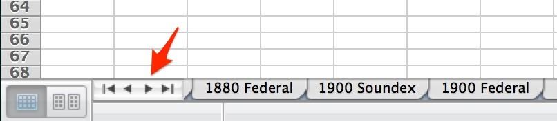 US Census Workbook Screenshot