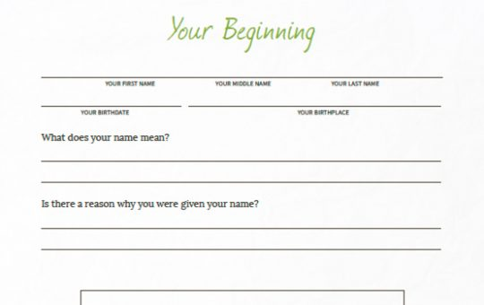 Your Story: Your Beginning